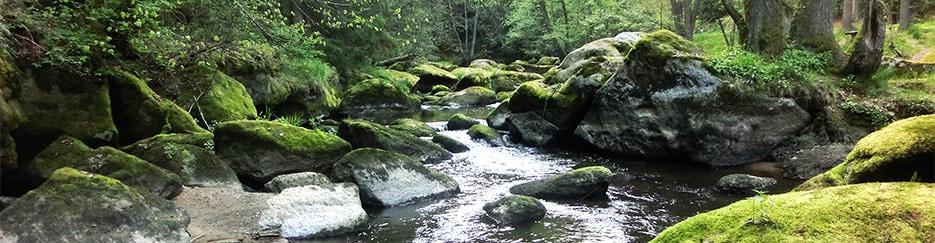 Río Waldnaab